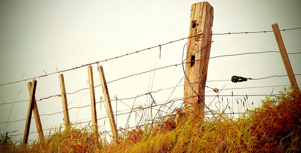 fence-980x500